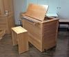 Chest Organ Mayer